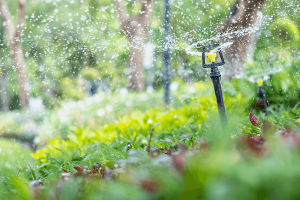 amazing-nature-view-of-sprinkler-on-blurred-greenery-background-in-garden