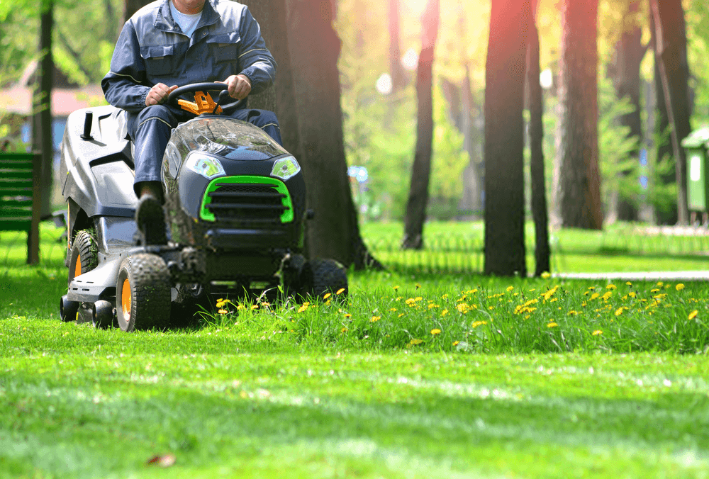 green-grass-treeming-with-lawn-mower