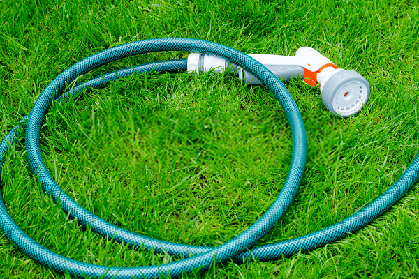Green-soaker-hose-for-watering-lies-on-grass