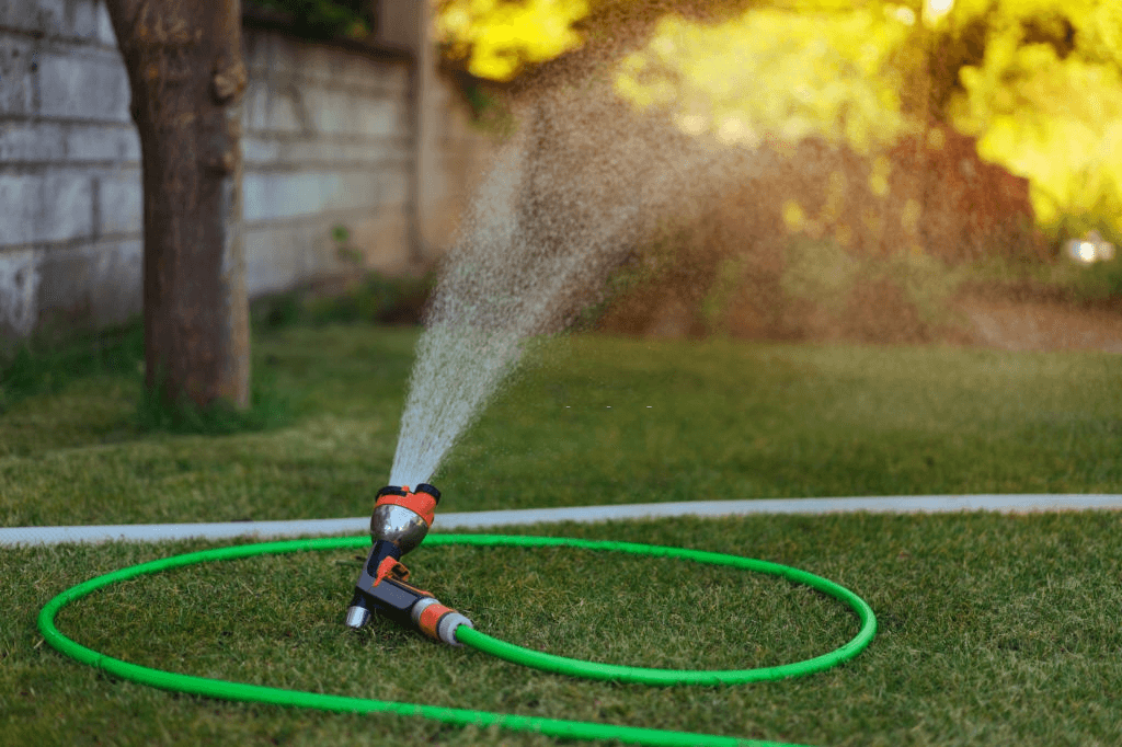 watering-the-Plants-by-using-soaker-hose